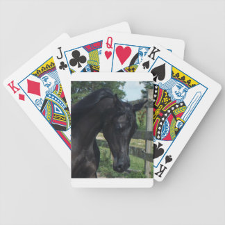 Young Black Arabian Stallion Bicycle Poker Deck