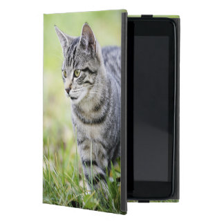 Young cat in nature iPad mini cover
