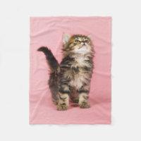Young Cat Looking Up Fleece Blanket