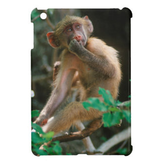 Young Chacma Baboon (Papio Ursinus) Sitting Case For The iPad Mini