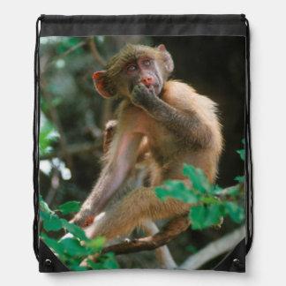 Young Chacma Baboon (Papio Ursinus) Sitting Drawstring Bag