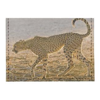 Young Cheetah (Acinonyx Jubatus) Stalks Tyvek® Card Case Wallet