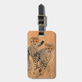 Young Cheetahs (Acinonyx Jubatus) Running Bag Tags