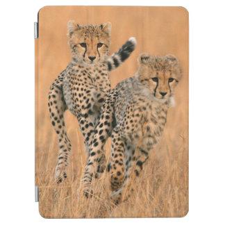 Young Cheetahs (Acinonyx Jubatus) Running iPad Air Cover