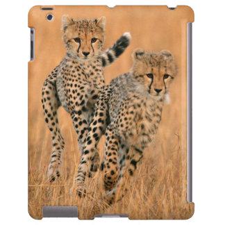 Young Cheetahs (Acinonyx Jubatus) Running iPad Case