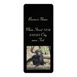 young chimpanzee 02 10 cm x 24 cm invitation card