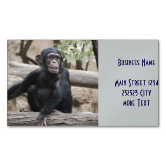 young chimpanzee 02 magnetic business cards