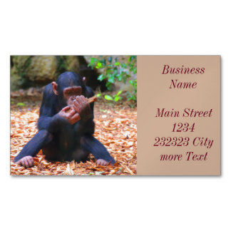 young chimpanzee 03 magnetic business cards