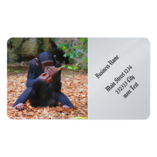 young chimpanzee 03 pack of standard business cards