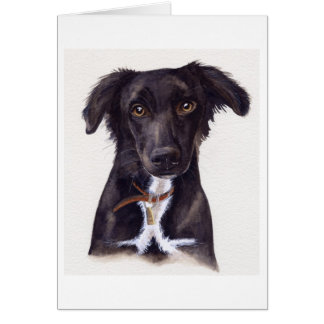 Young Collie Dog Painted in Watercolour Card