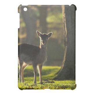 Young Deer iPad Case
