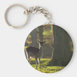 Young Deer Keychain/Keyring Key Ring