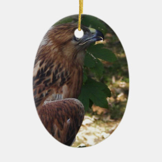 Young Eagle Ceramic Oval Decoration