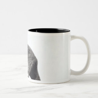 Young Elephant Caught in a Trap Two-Tone Coffee Mug