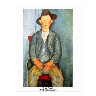 Young Farmer By Modigliani Amedeo Postcard