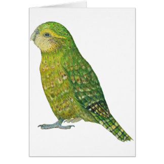 Young Female Kakapo Greeting Card