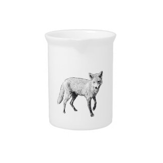 Young Fox Sketch Pitcher