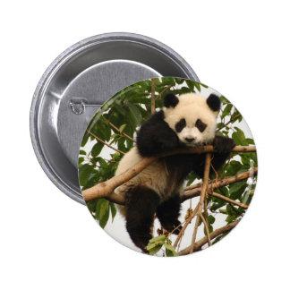 Young giant panda 6 cm round badge
