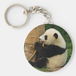 Young giant panda keychains