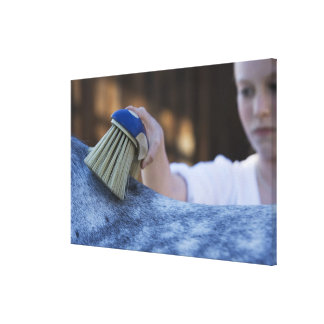 young girl brushing white horse canvas print