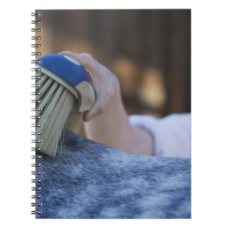 young girl brushing white horse spiral notebook