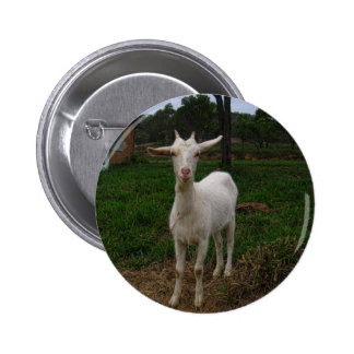 Young Goat 6 Cm Round Badge