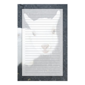 Young goat customised stationery