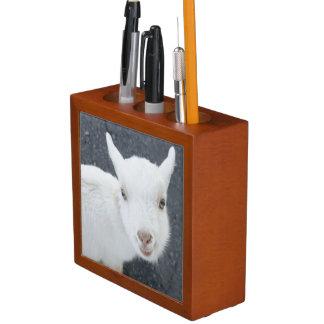 Young goat desk organiser