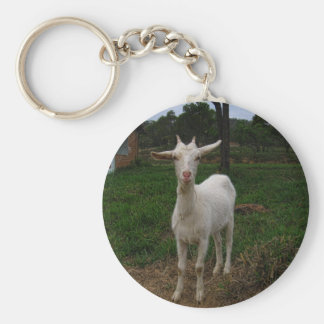Young Goat Key Chain