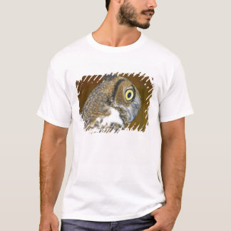 Young great horned owl indoors T-Shirt