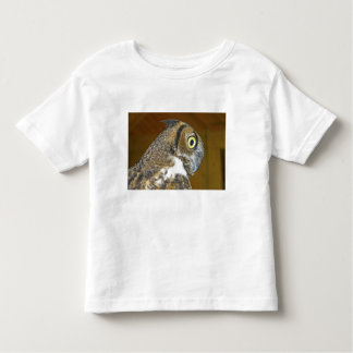 Young great horned owl indoors toddler T-Shirt