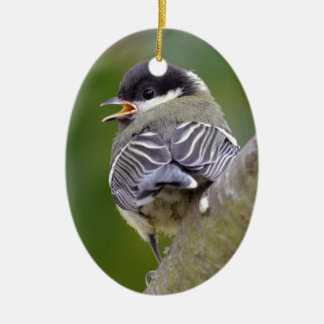 Young great passerine on branch ceramic oval decoration