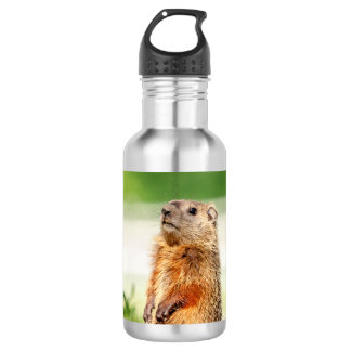 Young Groundhog 532 Ml Water Bottle
