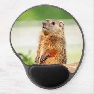 Young Groundhog Gel Mouse Mat