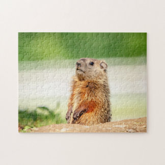 Young Groundhog Jigsaw Puzzle