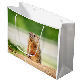 Young Groundhog Large Gift Bag
