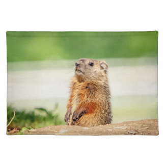 Young Groundhog Placemat