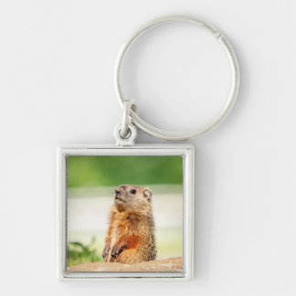 Young Groundhog Silver-Colored Square Key Ring