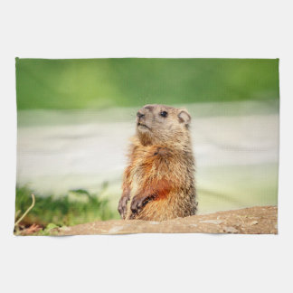 Young Groundhog Tea Towel