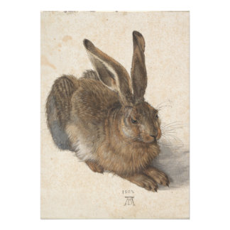 Young Hare by Albrecht Durer Card