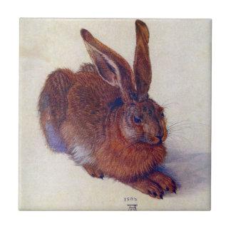 Young Hare by Albrecht Durer, Renaissance Fine Art Tile