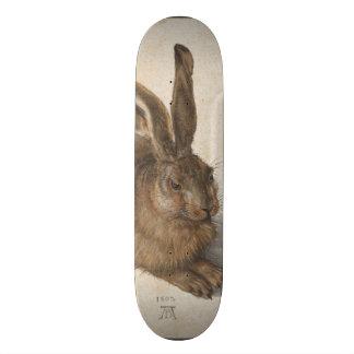Young Hare by Albrecht Durer Skateboard Decks