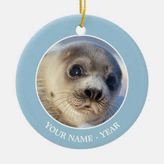 Young harp seal starting to shed its coat round ceramic decoration
