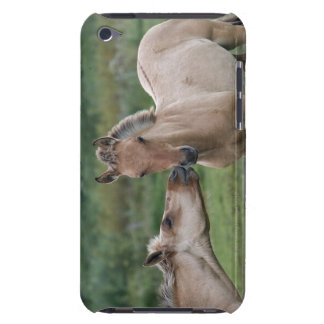 Young Henson horses encountering each other Barely There iPod Cover