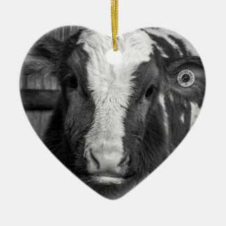 Young Holstein Dairy Bull Calf in Black and White Christmas Ornament