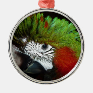 Young Jubilee macaw Silver-Colored Round Decoration