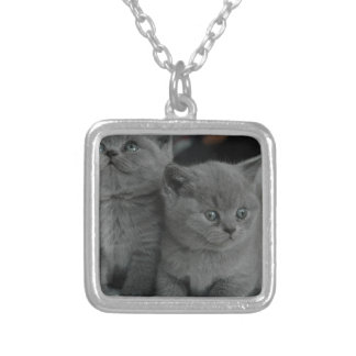 young kitten pet purr meow kitty cute cat custom jewelry