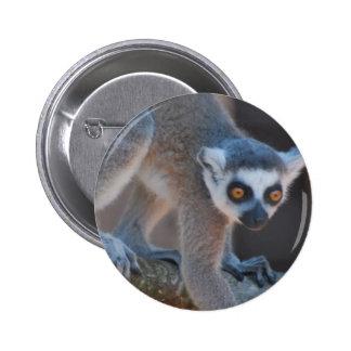 Young Lemur Button
