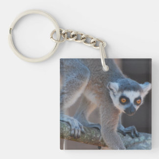 Young Lemur Keychain