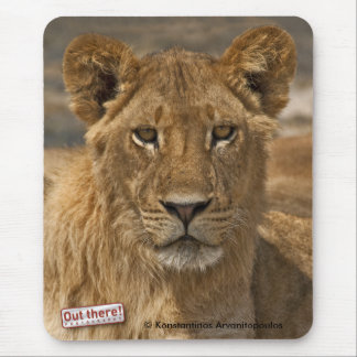 Young Lion Mouse Pad